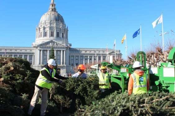 """How to get rid of your Christmas Tree - 2019 €�Chipping Of The Christmas Trees"""" Recycling Celebration SF"""