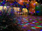 Fairy Winterland: Crafts, Stories & Lights Parade | Children's Fairyland