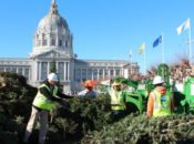 "2019 ""Chipping of the Christmas Trees"" Recycling Celebration 