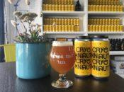 Cask's Free Guided Tastings: Seven Stills Beer | SF