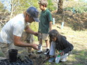 Earth Day Town Clean Up & Pizza Party | Sausalito
