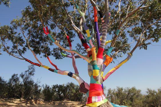 Yarn Tree Wrapping: SFu0027s Afternoon Art Break | Asian Art Museum