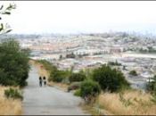 Bayview Hill Guided Nature Hike: Native Plants, Birds & Gorgeous Views | SF