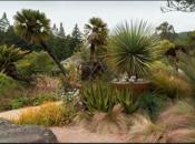 Free Admission Day at UC Botanical Garden | Berkeley