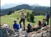 Mt. Tam Earth Day Weekend Hike: Sketching, Drawing & Writing | Mill Valley