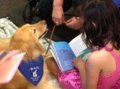 Read to a Dog at Elmhurst | Oakland