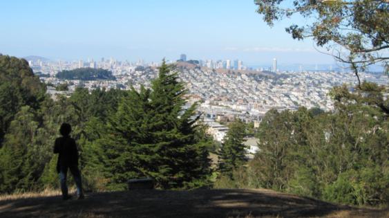 San Francisco Bay Bandits