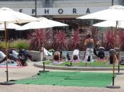Free Summer Yoga Sundays | Emeryville