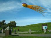 San Ramon Art, Wind & Kite Festival | 2019