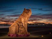 """""""Playa to Paseo"""" New Burning Man Art Unveiling   San Jose"""