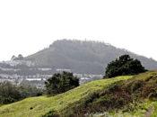 Mount Davidson's Hike: Walk & Tours  | SF