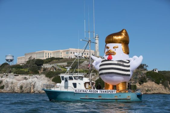 Another Trump Inflatable Sets Sail - This Time It's A Chicken