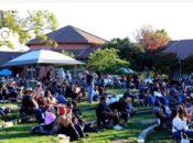 3rd Annual Morgan Hill Blues Festival | South Bay