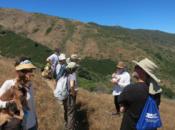 2018 LaborFest: San Bruno Mountain Wilderness Walk | Brisbane