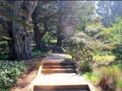Philosopher's Way Hike: Walk & Tours  | SF