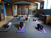 Wellness Wednesdays Free Community Yoga | Westfield Centre