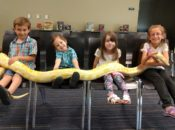 San Jose Reptile Show: Fun for the whole Family | South Bay