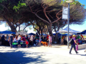 25th Annual Sunset District Community Festival | SF