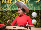 2019 Southeast Asian Harvest Festival: Street Soccer & Chinese Martial Arts | SF