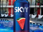 SKYY Vodka's Summer Pool Party: Cocktails, BBQ Bites & Ice Cream | SF