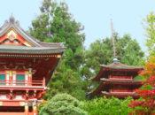 Japanese Tea Garden Summer Festival & Ninja Races | Golden Gate Park