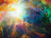 Extraterrestrial NightLife | California Academy of Sciences