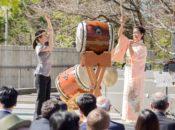 2018 Aki Matsuri Fall Festival: Japanese Drumming, Origami & Dance | Japantown