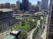 Salesforce Park Tree Tour with Mike Sullivan | SF