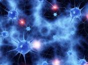Brain & Body NightLife | California Academy of Sciences