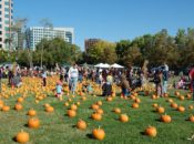 "2018 ""Pumpkins in the Park"" Festival | San Jose"