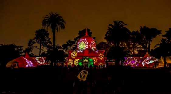 """Free Cheap Sf >> """"Night Bloom"""" at the Conservatory of Flowers 