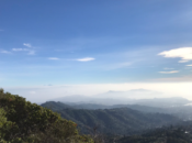 Mt. Tam New Year's Day Hike | East Bay