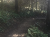"""Hike It Up"": San Bruno Mountain Summit to Suds 