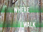 Leslie Carol Roberts Author Talk: Here Is Where I Walk | Green Apple Books