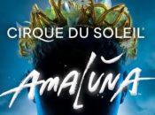 "Cirque du Soleil's ""AMALUNA"" at Oracle Park | SF"