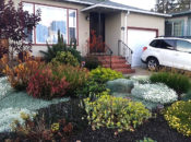 Design Your Own Native Plant Landscape | Burlingame