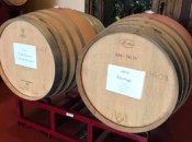 2019 Barrel Tasting Weekend: Wines & Beers | Livermore