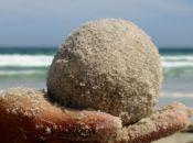 Accessible Beach Path & Sand Sculpting Workshop | Crissy Field