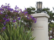 Bungalows of Westwood Park: Rare Walking Tour | SF City Guides