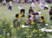 1st Annual Norooz Spring Festival | Union Square