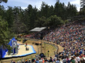 """2019 Mountain Play: """"Grease"""" Musical on Top of Mt. Tam 