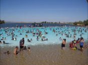 4th of July Weekend: Free Swimming Friday | East Bay Regional Parks