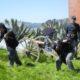 "2019 ""Civil War Days"" Festival & Battle Reenactments   Angel Island"