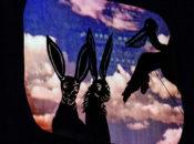 Exploratorium After Dark: Nature's Cabaret | Pier 15