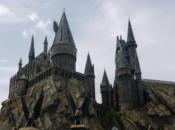 Harry Potter Birthday Celebration | Mountain View