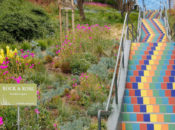 SF's Newest Stairway Garden Grand Opening | Bernal Heights