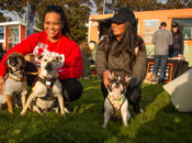 10% Off: Trail Mixer: Crissy Field Outdoor Happy Hour w/ Dogs, Yoga & Beer | SF