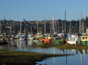 Martime Day: Live Music, Flea Market & Open Boat Tours | Sausalito