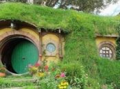 Tolkien Live Musical Performance | Mountain View
