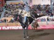 2019 Grand National Rodeo | Cow Palace